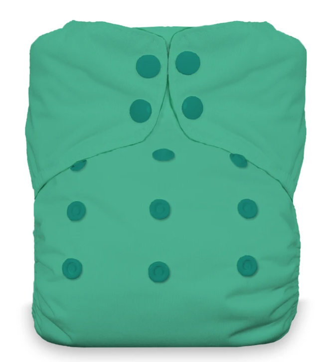 Thirsties Stay Dry Natural One Size AIO Snap Seafoam