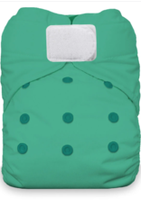 Thirsties Thirsties Natural One Size AIO H&L Seafoam
