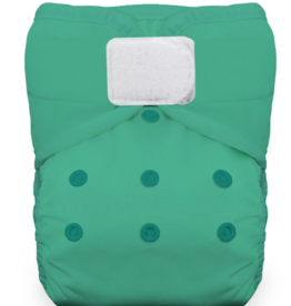 Thirsties One-Size Natural Pocket H&L Seafoam