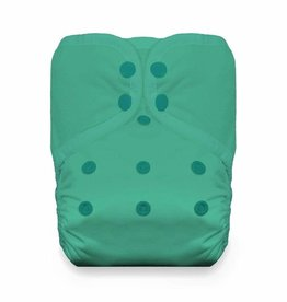 Thirsties Thirsties One-Size Natural Pocket Snap Seafoam