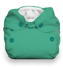 Thirsties Thirsties Newborn AIO Snap - Seafoam