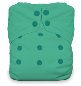 Thirsties Thirsties Natural One Size AIO Snap - Seafoam