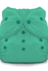Thirsties Thirsties Duo Wrap size 2 Snap Seafoam