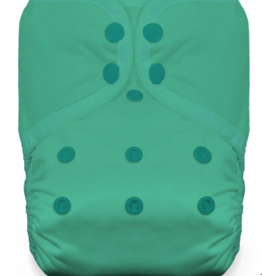 Thirsties Thirsties One Size Pocket Diaper Snap - Seafoam