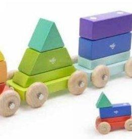 Tegu Shape Train Rainbow