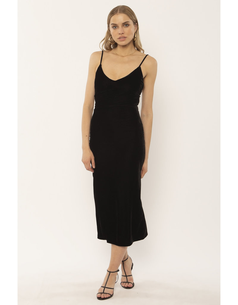 Amuse Society Verona Velvet Dress