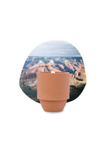 Paddywax National Parks Ceramic Candle GRAND CANYON CACTUS FLOWER & FERN