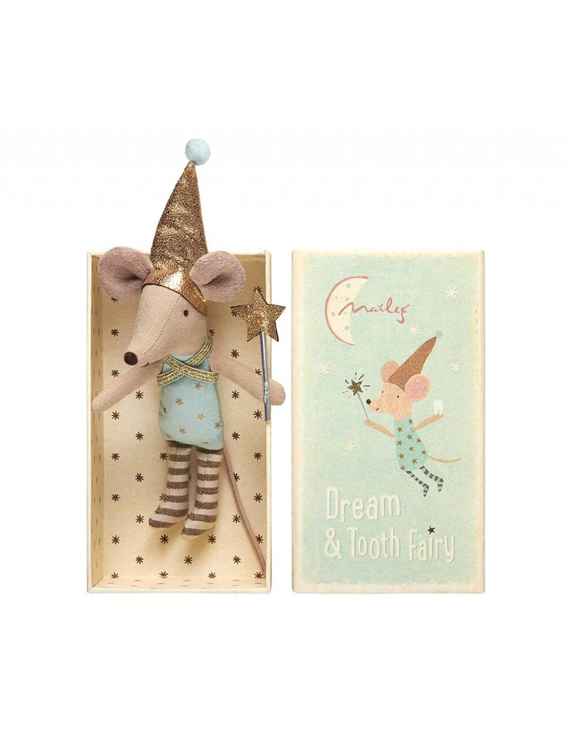 Tooth Fairy Big Brother Box
