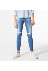 Adriano Goldschmied Isabelle High-Rise Straight Crop