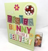Bunny Has Made A Delivery - Easter (SREAS2)