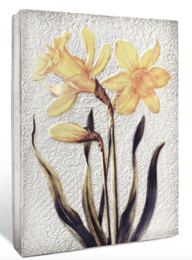 Sid Dickens Daffodils
