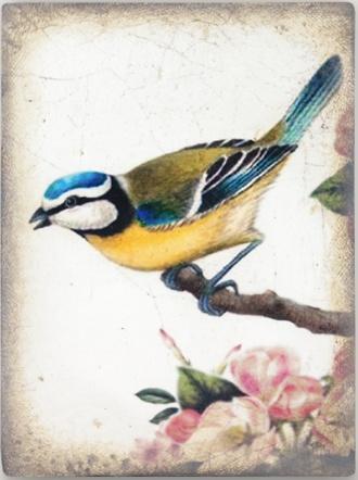 Sid Dickens Songbird