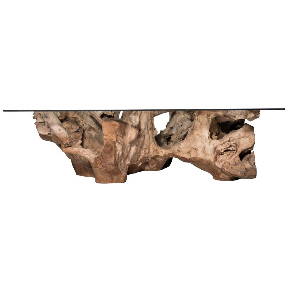 Teak Root Large Coffee Table - Natural with Glass