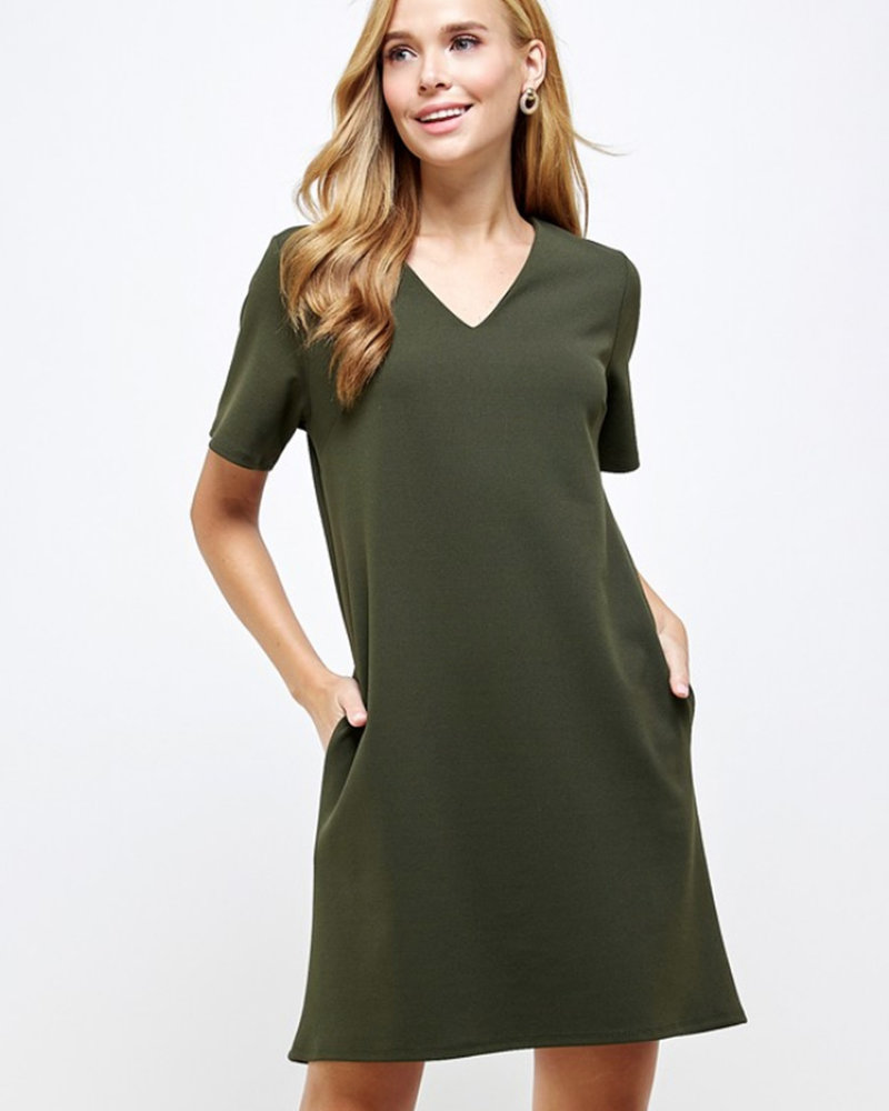 Brianna Solid VNeck Shift Dress