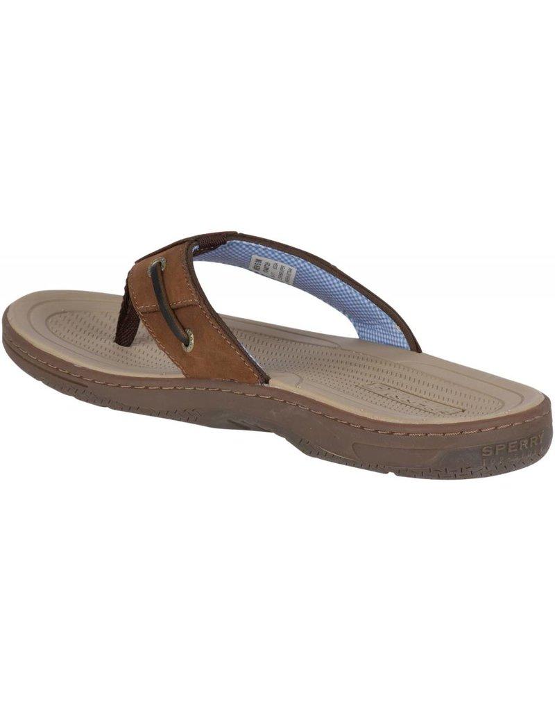 1d6bd345b4b Sperry Mens Baitfish Thong Brown Buc - Island Comfort Footwear