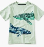 boy tea collection whale shark graphic tee
