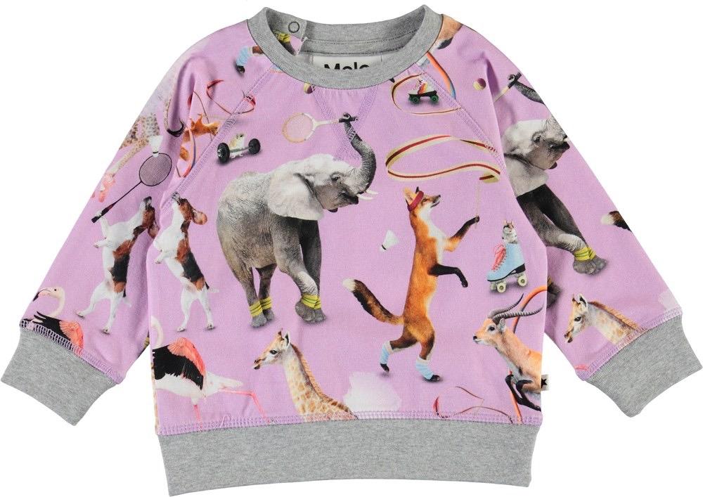 little girl molo elsa sweatshirt