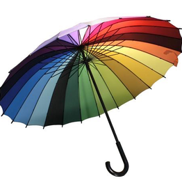 functional accessory rainbow umbrella