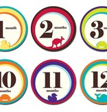 functional accessory z Sticky Bellies 1st year milestone stickers