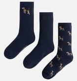 boy 3 socks set