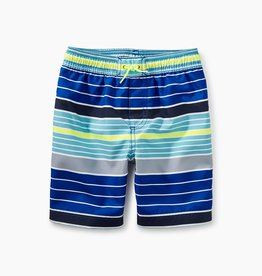 25b6ecacbe toddler boy print swim trunks
