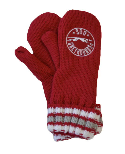 Youth Winter Mittens