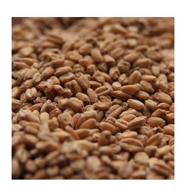 Rahr Malting Co. Red Wheat Malt