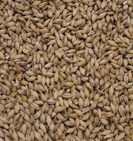 Root Shoot Malting Genie (2-Row) Munich Malt 4L