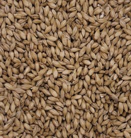 Root Shoot Malting Odyssey (2-Row) Pilsner Malt