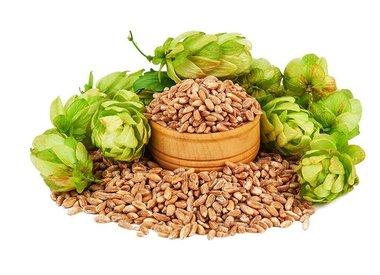 Beer Brewing Ingredients