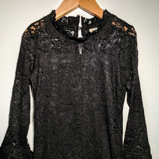 ML Fashions Dressy Lace Fashion Top