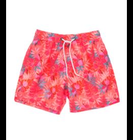 Snapper Rock Boy's Board Swim Shorts