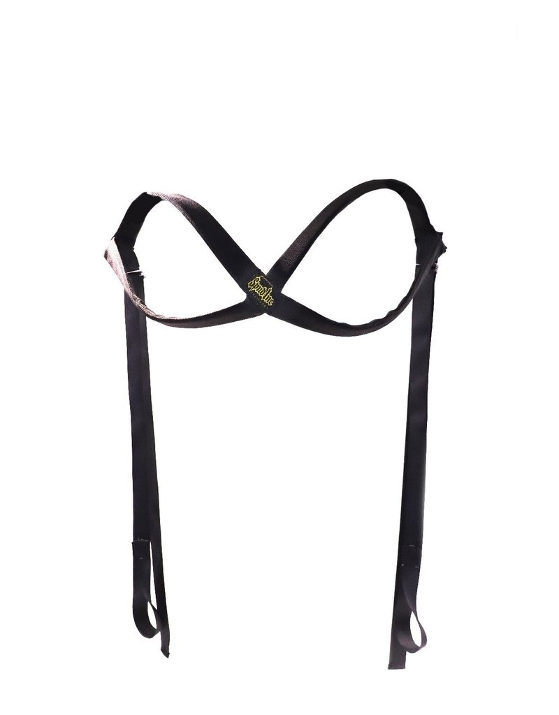 Deadlift Harness