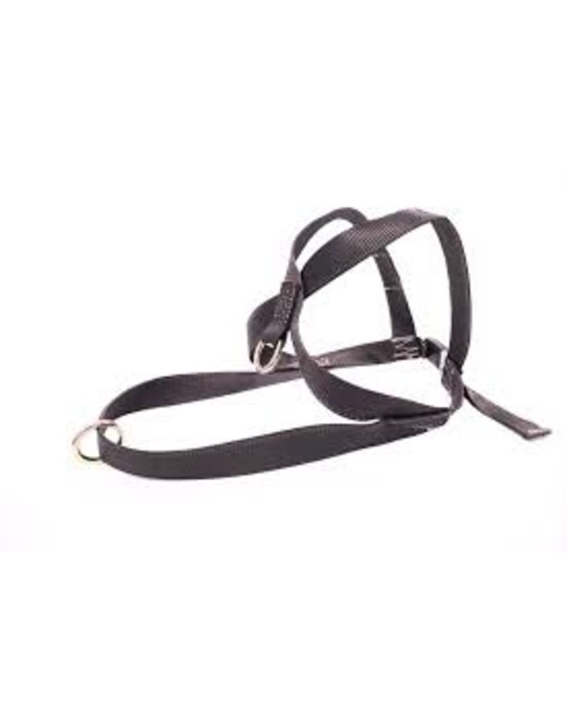Sprinter Harness