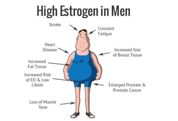 Estrogen is a Bitch