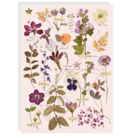 Love Garden Card