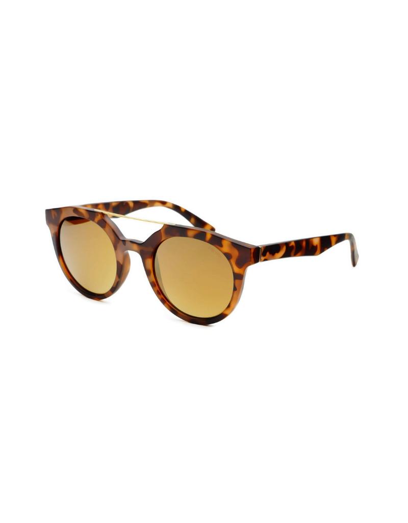 Collins Sunglasses