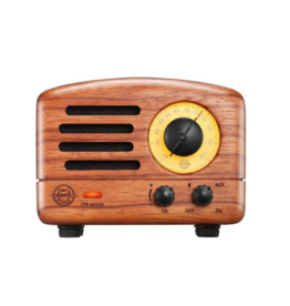 OTR Bluetooth Radio in Rosewood