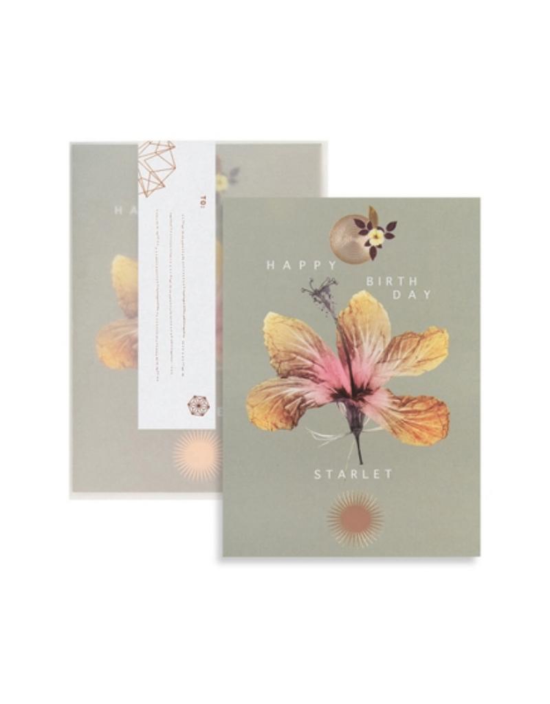 Hibiscus Birthday Greeting Card