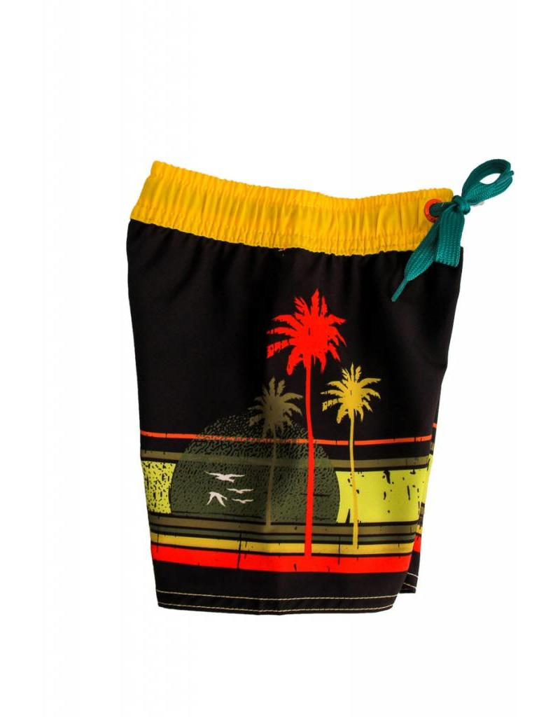 Big Wave Dave BWD Palm Tree Toddler Boardshorts