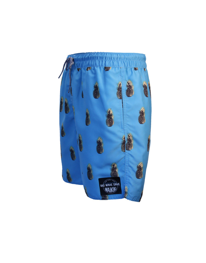 Big Wave Dave BWD Swell Boardshorts