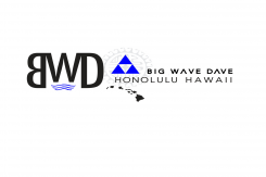 Big Wave Dave