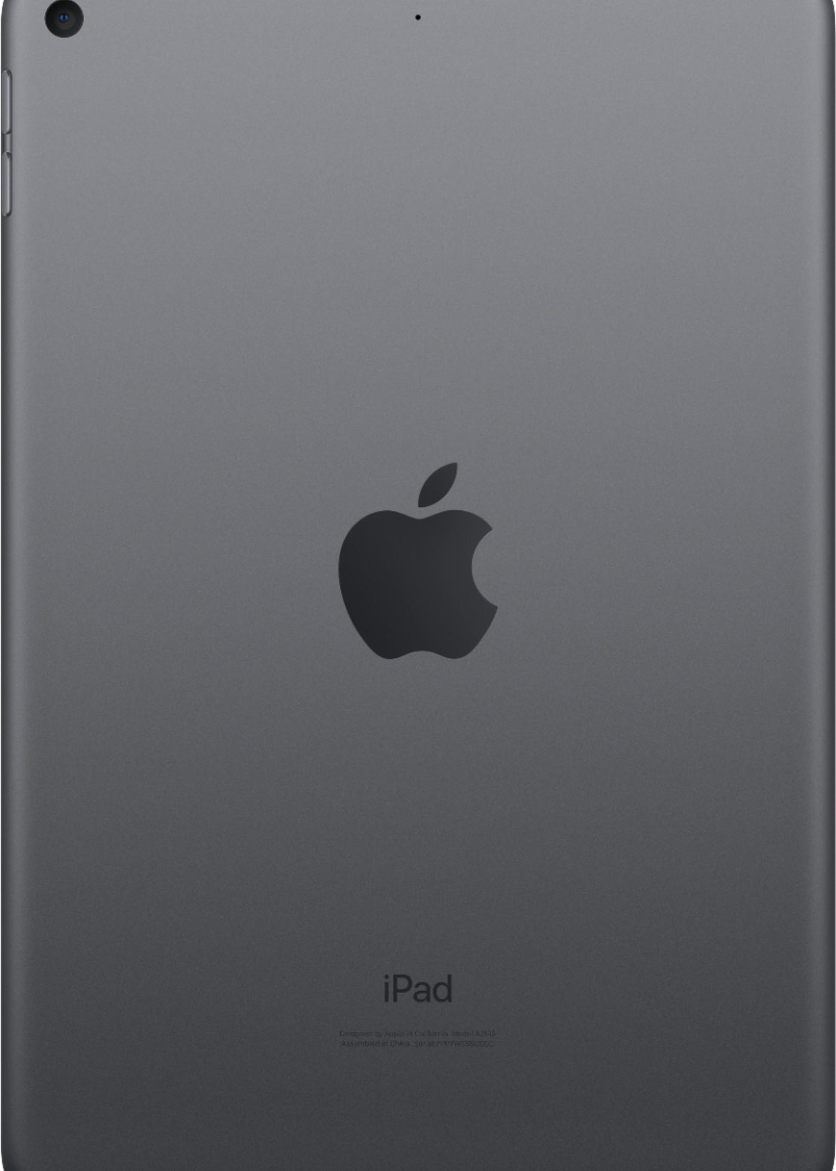 iPad Mini Wi-Fi 64 GB - Space Gray