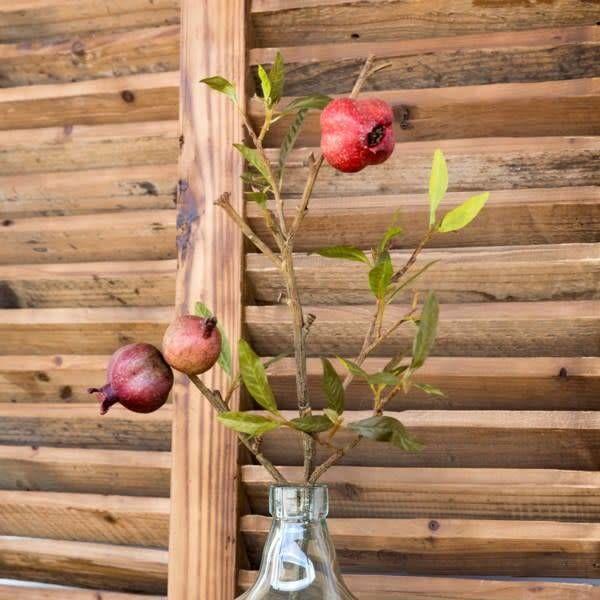 Pomegranate Cutting Stem HY1308
