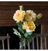 Park Hill Gathered Garden Roses Yellow HY1231Y