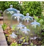 Park Hill Small Bell Jar 10.5'' X 7''