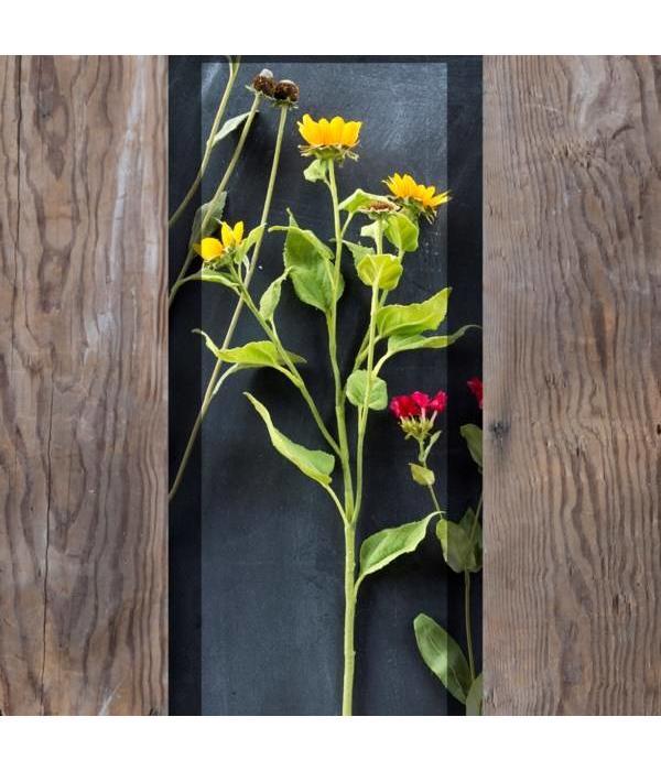 Park Hill Crafted Wild Sunflower Stem XG5288