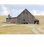 Crestview Barn House