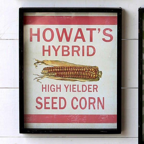 Framed Feedsack Howast's Hybrid Corn IM6520