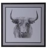 Crestview Black Bull CVA4106